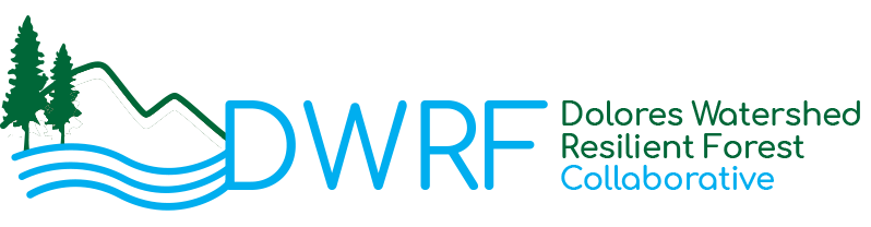 DWRF Collaborative